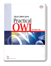 practical_owi_in_oracle_10g